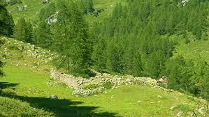 Emergenza Covid pretesto per rilanciare speculazione edilizia e consumo di suolo L'Avviso vergogna del Sindaco di Torgnon